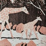 A pink and black woodcut of a giraffe with a baby giraffe walking to the right with branches about by artist Josonia Palaitis