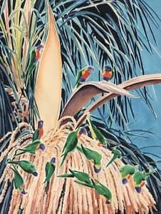 Watercolour by Josonia Palaitis depicting fifteen predominantly green lorikeets feeding on the large flower of a palm tree with a blue sky background