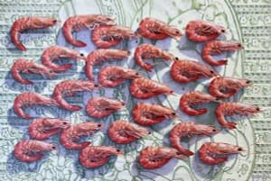 Photorealist oil painting by Josonia Palaitis depicting an arrangement of prawns all facing towards the right and viewed from above resting on a green and white tablecloth