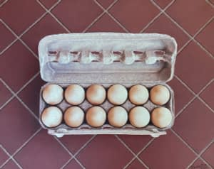 Photorealistic painting by Josonia Palaitis depicting a dozen eggs in a carton placed on a brown tiled floor with the lid open