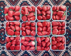 Phototrealist oil painting by Josonia Palaitis depicting 12 punnets of strawberries arranged symmetrically on a persian rug and viewed from above