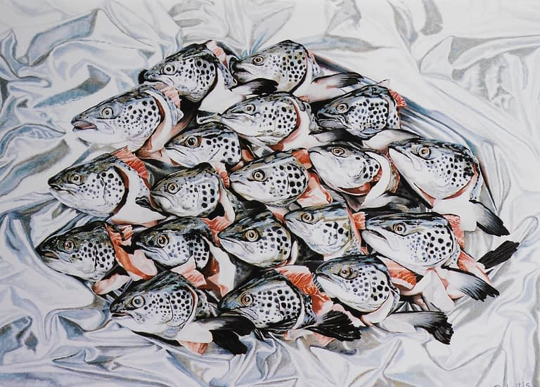 Photorealistic oil painting by Josonia Palaitis depicting 15 salmon heads arranged on silver foil looking to the left